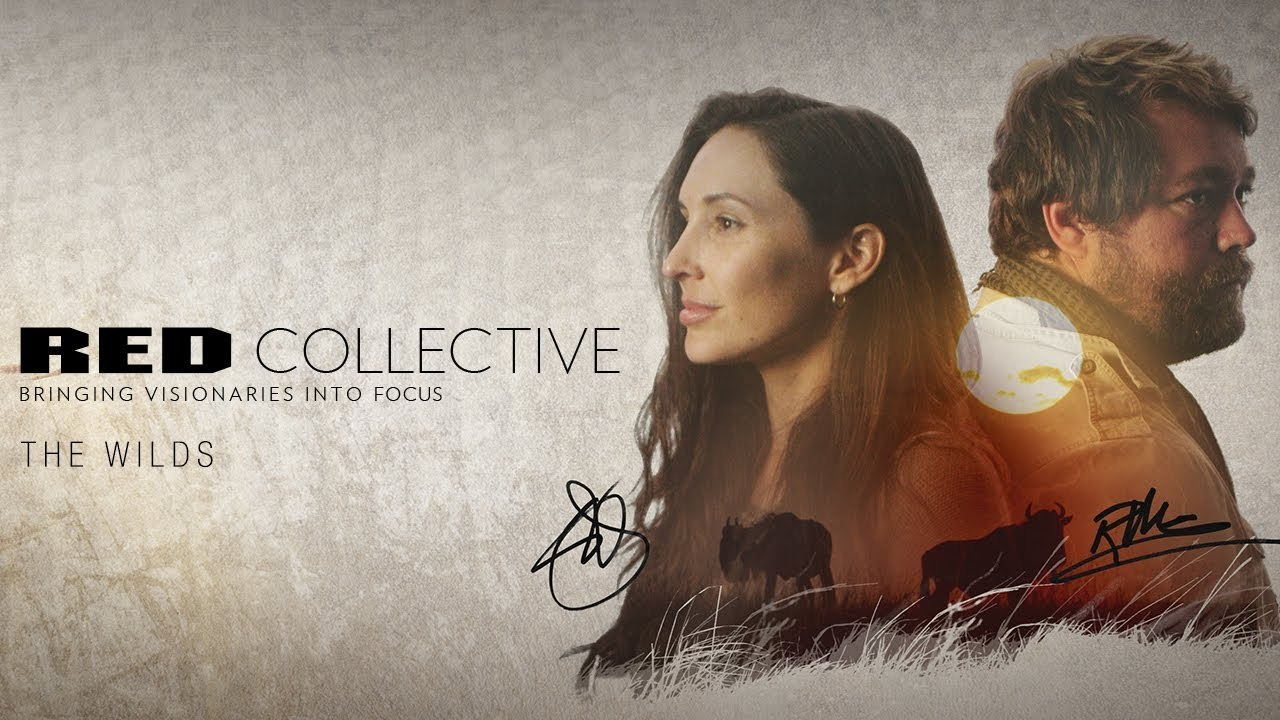 RED Collective: The Wilds