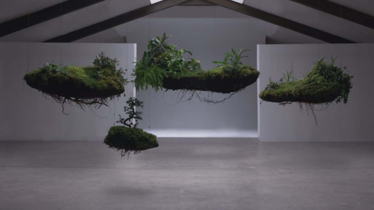 WASO | All things beautiful come from nature | Director's Cut