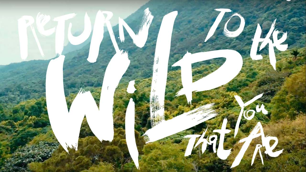 Return to the Wild that You Are |台東 |Taitung