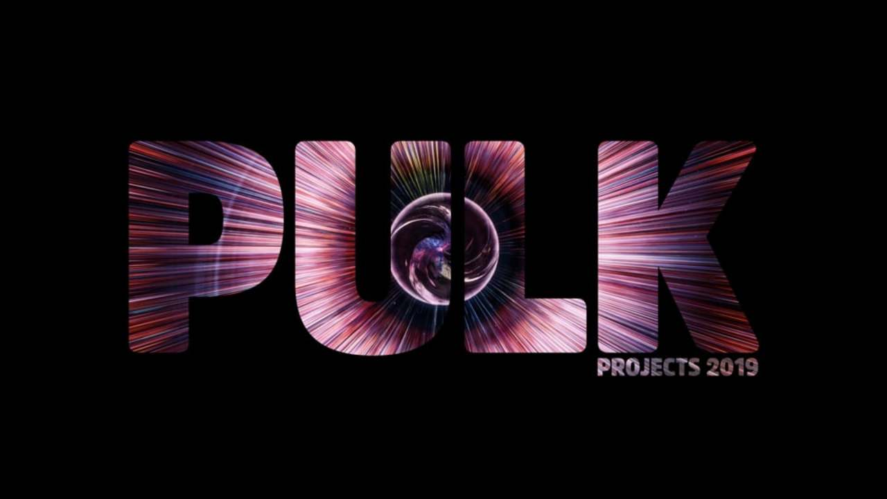 PULK projects 2019